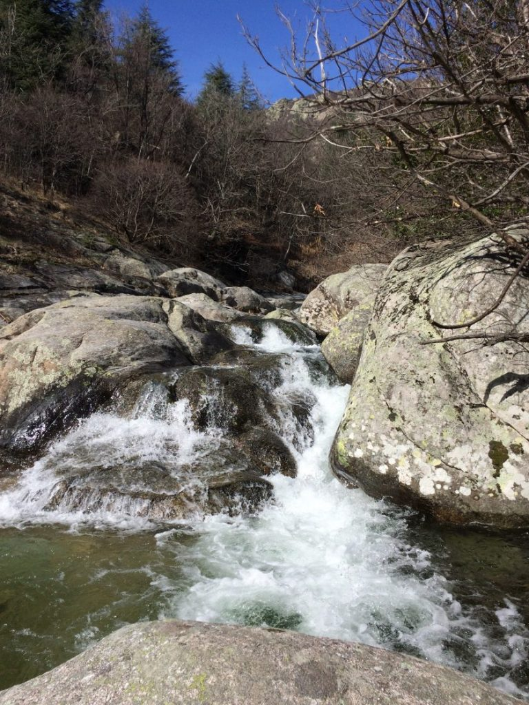 Wasser_tarn