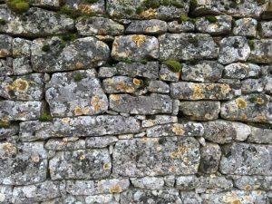 Natursteinmauer mit Moos und Flechten